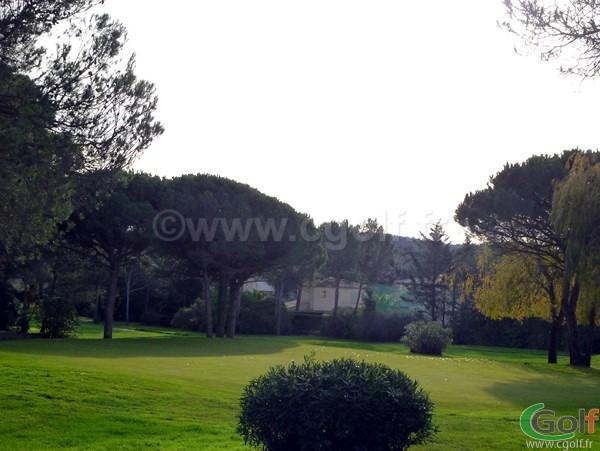 Le putting green du Golf Esterel Blue Green dans le Var à Saint Raphael en région PACA