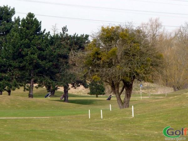 Green du golf de Saint Quentin en Yvelines en Ile de France proche de Paris et Versailles
