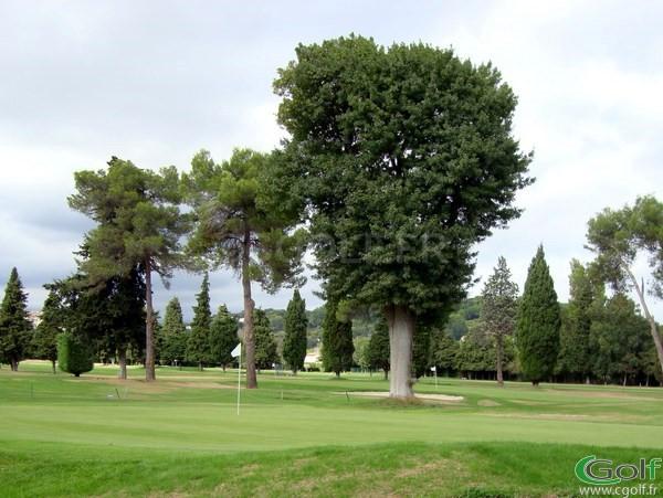 Le green du n°3 et n°18 du golf de Biot dans les Alpes Maritimes 06