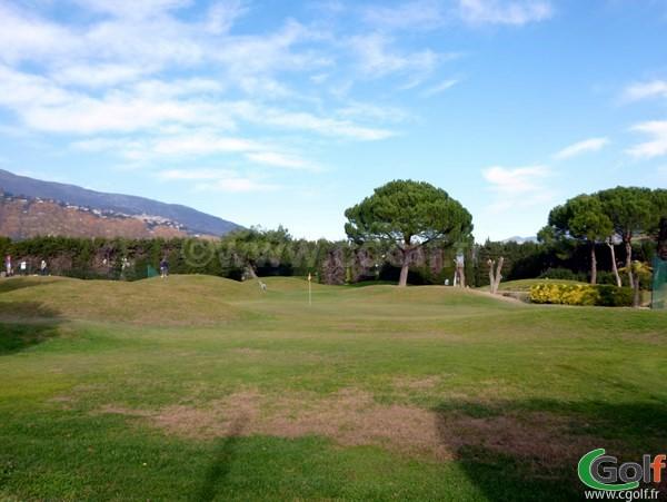 Green du golf country club de Nice dans les Alpes Maritimes sur la Cote d'Azur