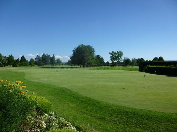 Putting green du golf du Forez à Craintilleux en Rhône-Alpes dans la Loire