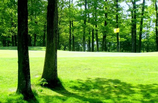 green n°1 du golf de Guerville dans les Yvelines proche de Paris en Ile de France