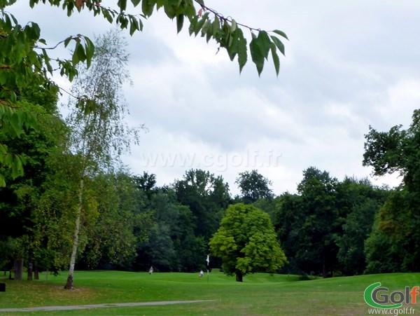 Green du golf de l'Isle d'Adam dans le Val d'Oise à proximité de Paris Ile de France
