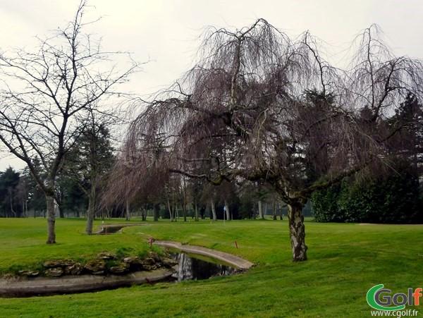 Le green n°18 du golf de La Boulie dans les Yvelines proche de Paris à Versailles