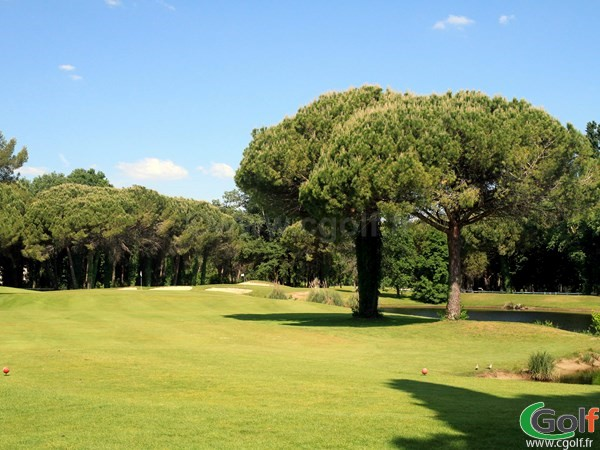 Fairway et green du golf Compact de La Grande Motte proche de La Camargue