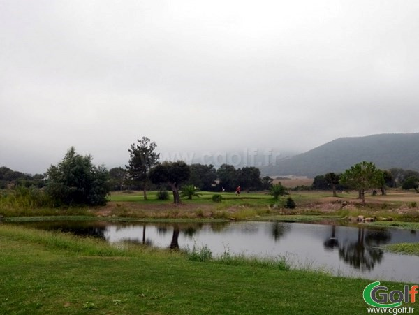 Green du golf de Lezza à Porto-Vecchio en Corse proche de Bonifacio