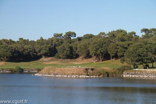Green n°1 du golf de Saint Jean de Monts en Vendée en Pays de Loire proche de Nantes