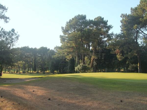 Green du golf de Saint Laurent parcours des pins à Auray en Bretagne dans le Morbihan