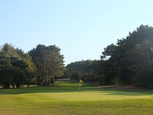 Green du parcours des Pins du golf Saint Laurent à Auray dans le Morbihan en Bretagne