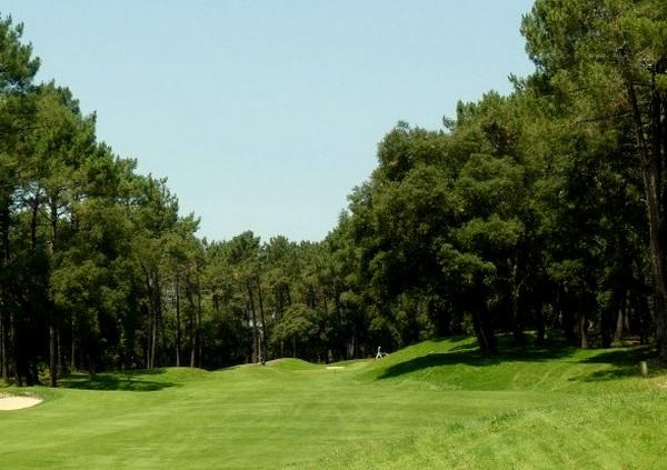 Fairways du golf de Seignosse en Aquitaine dans les Landes
