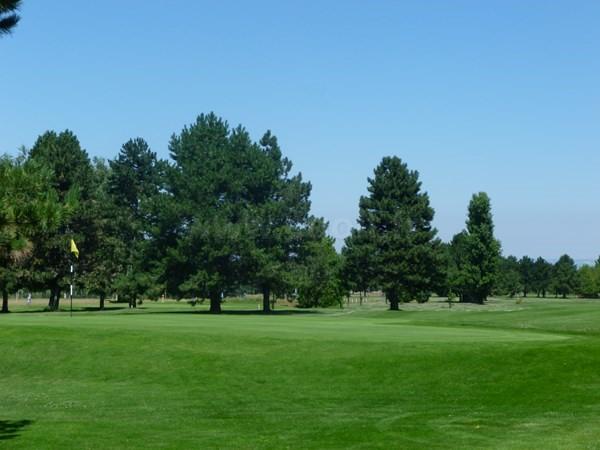 Green n°18 du golf de Valence Saint Didier dans la Drôme provençale en Rhône Alpes