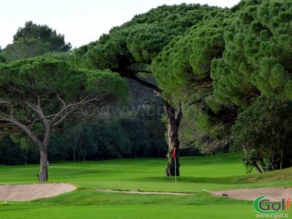 Le green du n°2 du golf de Valescure à Saint Raphael dans le var sur la cote d'azur