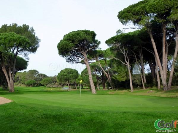 Le green du n°15 du golf de Valescure sur la Cote d'Azur dans le var à Saint Raphael